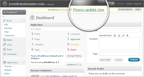 Cómo actualizar WordPress desde el Área del Administrador? - SERED