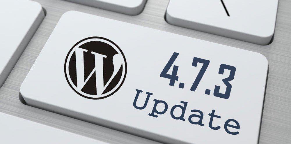 ¿Cómo puedo saber qué versión de WordPress estoy usando?