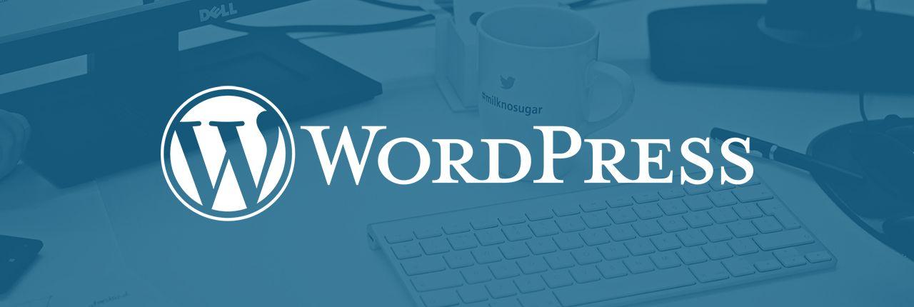 ¿Cómo encontrar el software adecuado para páginas web para PYMES?